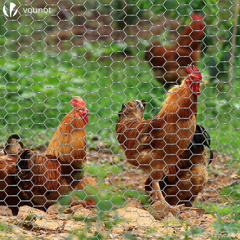 Grillage à poules